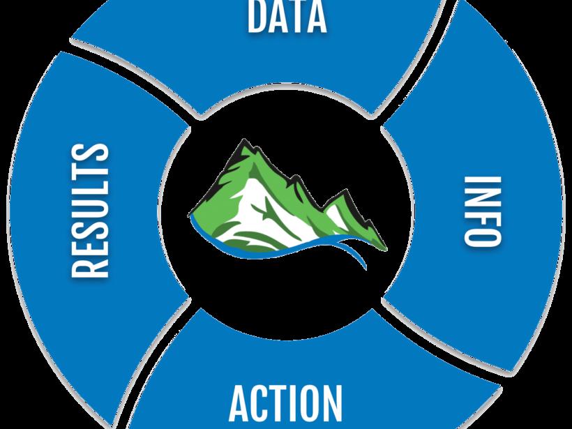 Data Info Action Results Pinwheel Making Data Make Sense